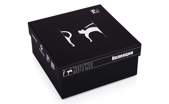 Luxury packaging - Box for Luxury Catalogs 10