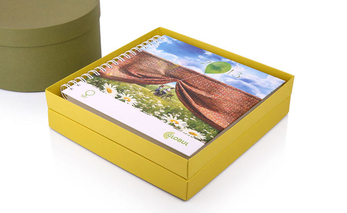Luxury packaging - Box for Gifts 25